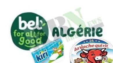 Photo of Le groupe investit dans le segment de la fromagerie : Bel Algérie détient 40% des parts du marché local