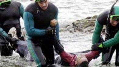 Photo of Sept cadavres rejetés par la mer à Mostaganem